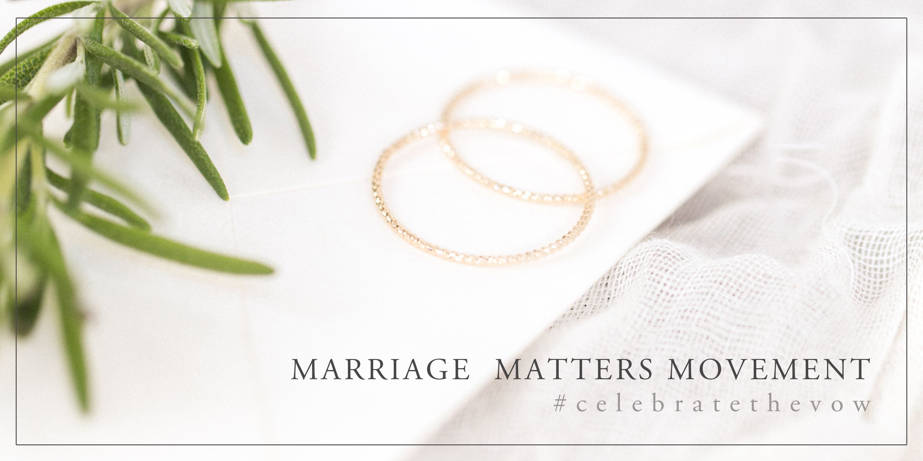 fine art marriage matters movement, celebrate the vow